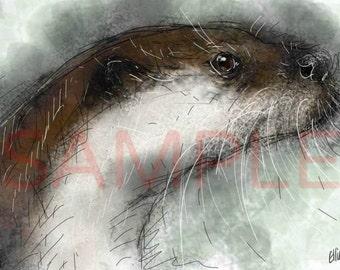 Otter - A4 print