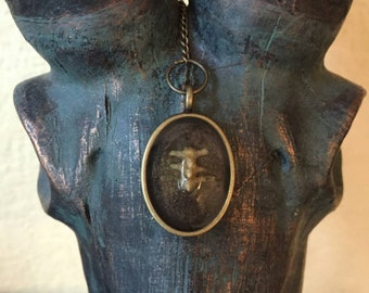 Real Bone Pendant Bird Vertebrae Necklace
