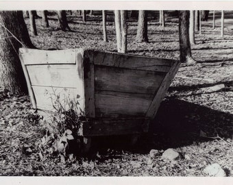 Wheelbarrow in the Woods - Photograph