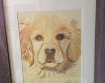 Custom pet portrait. Sample.
