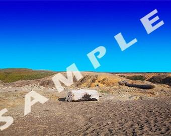 Digital Download- Photo Background- Beach