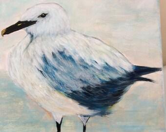 2- 8x10 Birds of the shore