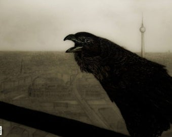 Crow and the city drawing print, original drawing of a crow with the city of Berlin in background. Pencil and charcoal drawing