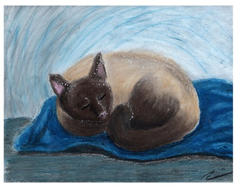 Cat Art / Cat Print, Sleeping Seal Point Siamese Cat Art Print by Heather Payer-Smith; print of oil pastel drawing