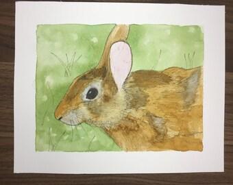 Rabbit Watercolor Original Painting