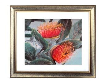 Wattle Illustration, Wattle Art Print, Australian Decor, Australian Art, Floral Art, Wattle Wall Art, Red Flowers Artwork, Red Decor