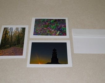 Fall Photo Cards (Blank Greeting Cards)