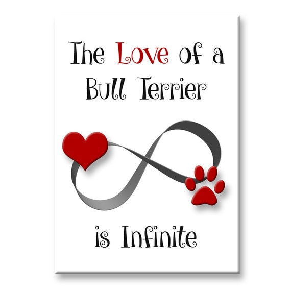 Bull Terrier Infinite Love Fridge Magnet