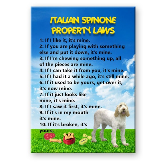 Italian Spinone Property Laws Fridge Magnet No 1