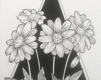 Growing Daisies - framed, hand drawn, pen & ink