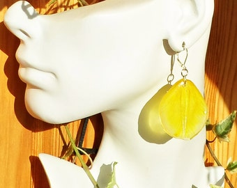 Real flower in resin, earrings made of epoxy resin, the epoxy resin and hardener, flowers in epoxy resin