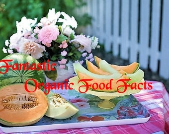 Fantastic Organic Food Facts-Getting the right information about eating healthy with organic food!- Pdf-