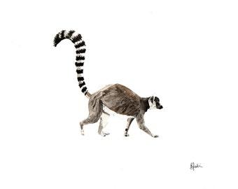 A5 Ring Tailed Lemur Watercolour Print - Original Handmade Art Print