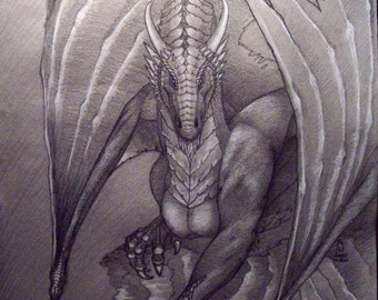 White Dragon, frost dragon, snow dragon, dragon drawing, dragon sketch, mythology, original art,