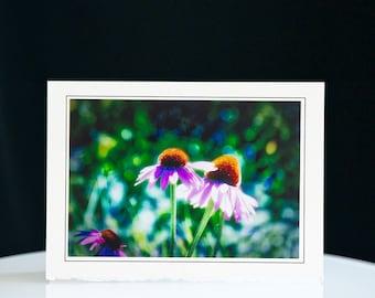 Card Art - Handmade - Echinaceas - Birthday - Wedding - Holidays - Anniversary - Free Shipping