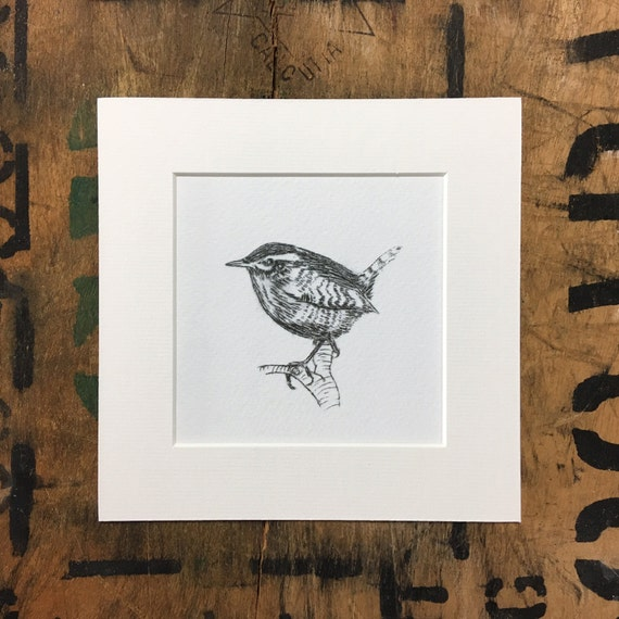 Wren Mounted Print • Wren Etching Print • Wren Illustration • Wren Wall Art • Wren Decor • Nursery Bird Print • Gift For Bird Lovers