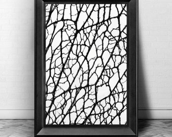 BRANCHED OUT - Instant Digital Download Print - Black & White Abstract Design Home Decor - HD Wall Art Print- 5 Different Sizes up to 20x30