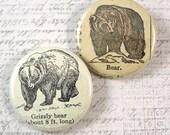 Bear Pinback Button Set