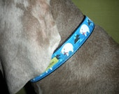 Arctic Collar in White and Blue