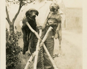 Vintage photo 1920 Man Carrying Two hound Dogs under his Arms