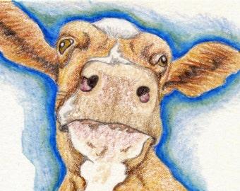 ACEO ATC Brown Cow Drawing Original Farm Art-Carla Smale