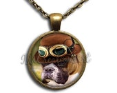 20% OFF - Steampunk Boxer Dog Glass Dome Pendant or with Chain Link Necklace AN181