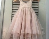 Sparkle Magic Dusty Rose flower girl dress French lace and silk tulle dress for baby girl dusty rose princess dress beige tutu
