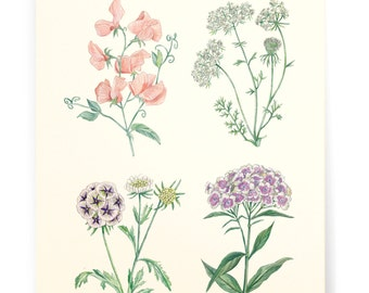 Botanics Art Print