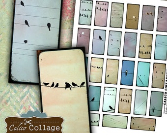Birds on a Wire Collage Sheet - Domino Tile Images - 1x2 Collage Sheet - Domino Images - Craft Sheet for Domino Tiles Pendants Bezels