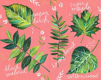 Leaf Chart | Acrylic Painting | Nature Wall Art | Outdoorsy | Katie Daisy | 8x10 | 11x14