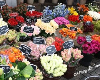 Dutch Flower market, photo of the wonderful flowers for sale in Holland, perfect for any decor