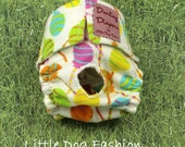 XS Dog Diapers Lollipops on White