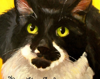 PET PORTRAIT  8 x 8 head and shoulders/oil on canvas