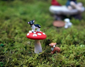 Miniature  Chihuahua for terrariums or small gardens-6 dogs to choose from-Tiny dog