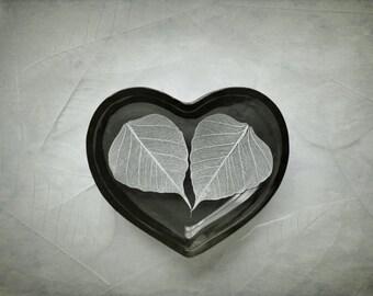 Photograph 8 x 12 archival print skeleton leaves heart love valentine fine art photography wall art vintage tones
