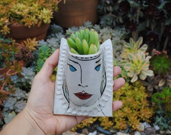 illustrated ceramic wall planter garden pocket