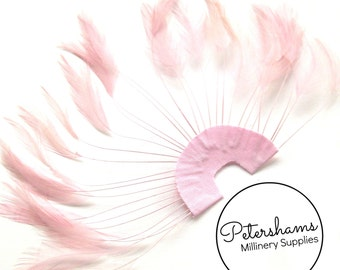Stripped Hackle Feather Fan for Fascinators & Hat Making - Light Pink