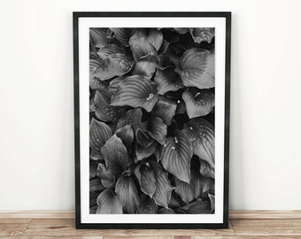 PRINTABLE wall art. Back Leaves 8x10 and 11x14. botanical, black, room decor, modern, minimalist decor