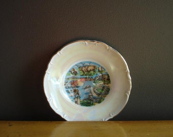 Vintage Texas Souvenir Plate - TX Love - Small Iridescent Texas Plate or Saucer