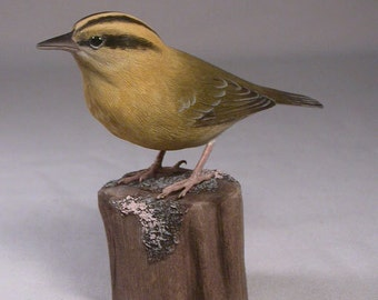 Worm-eating Warbler Hand Carved and Hand Painted Wooden Bird