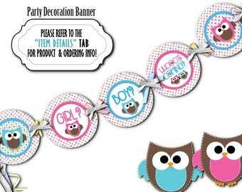 Baby Shower Gender Reveal Party Banner, Party Bunting, Baby Shower Decoration, Photo Prop, Pink, Blue, Baby Owls