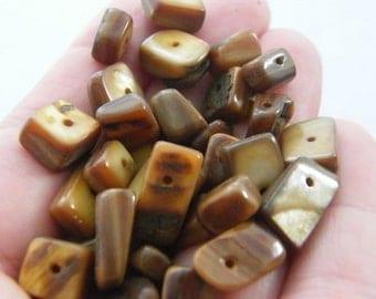 100g Brown Macadam shell beads B108