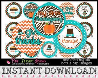 "Teal & Orange Thanksgiving - INSTANT DOWNLOAD 1"" Bottle Cap Images 4x6 - 860"