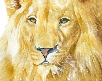 Lion Watercolor Print 24x36 Poster - African Lion Painting