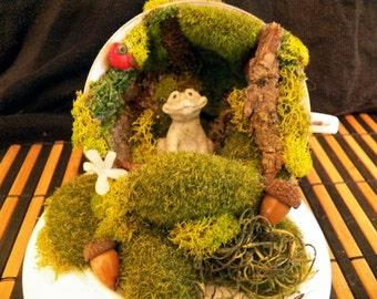 Prince of Frog Holler Teacup Diorama