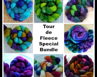 Tour de Fleece Special 8 oz. Bundle  Hand Dyed Variety Package