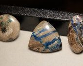 U - Pick - Colla wood cabochons - very rare petrified wood from Turkey, collawood, matching set for earrings
