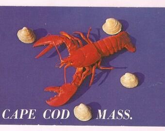 Lobster Cape Cod Postcard - New England Decor