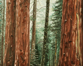 Redwoods- 11 x 14 professional art print of oil painting