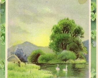 Vintage St Patrick's Day Postcard We Love Old Ireland – Swans on Water 1915 GDD